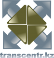 Transinter TIM group  logo