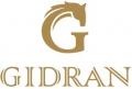 Gidran logo